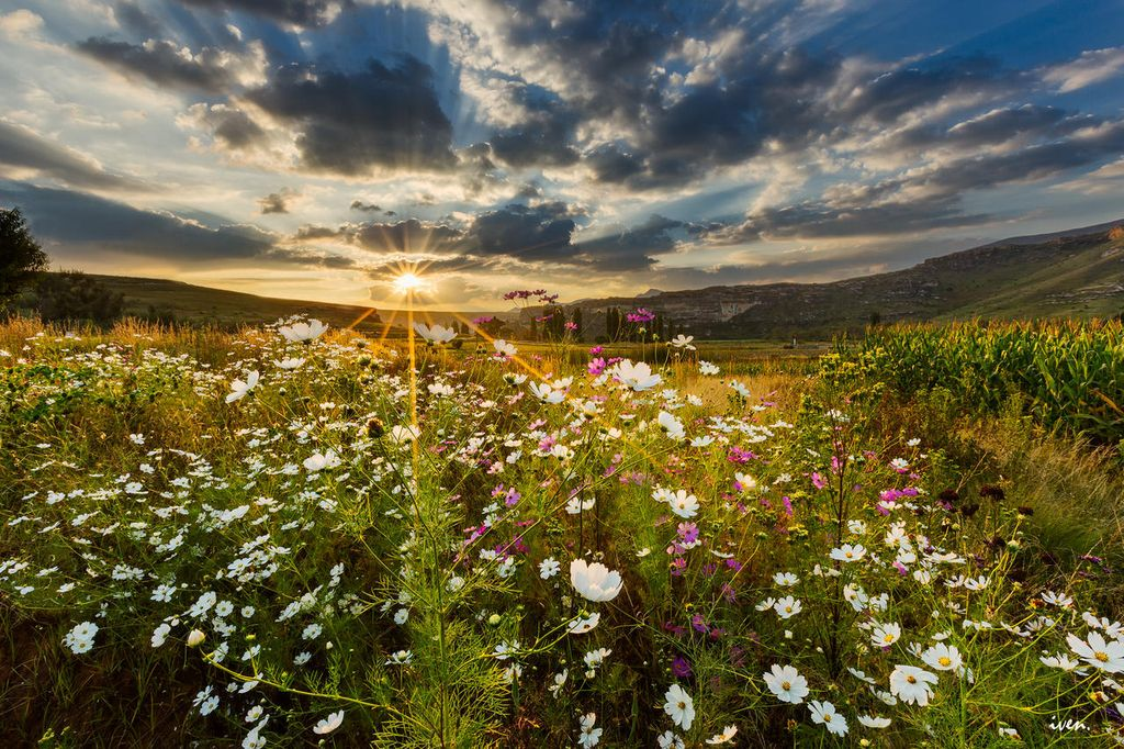 8-sunset-over-field-south-africa-PHOTOCROWD-SUN