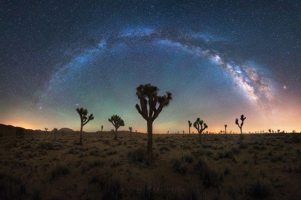 9 qualités d'un bon photographe Michael Shainblum