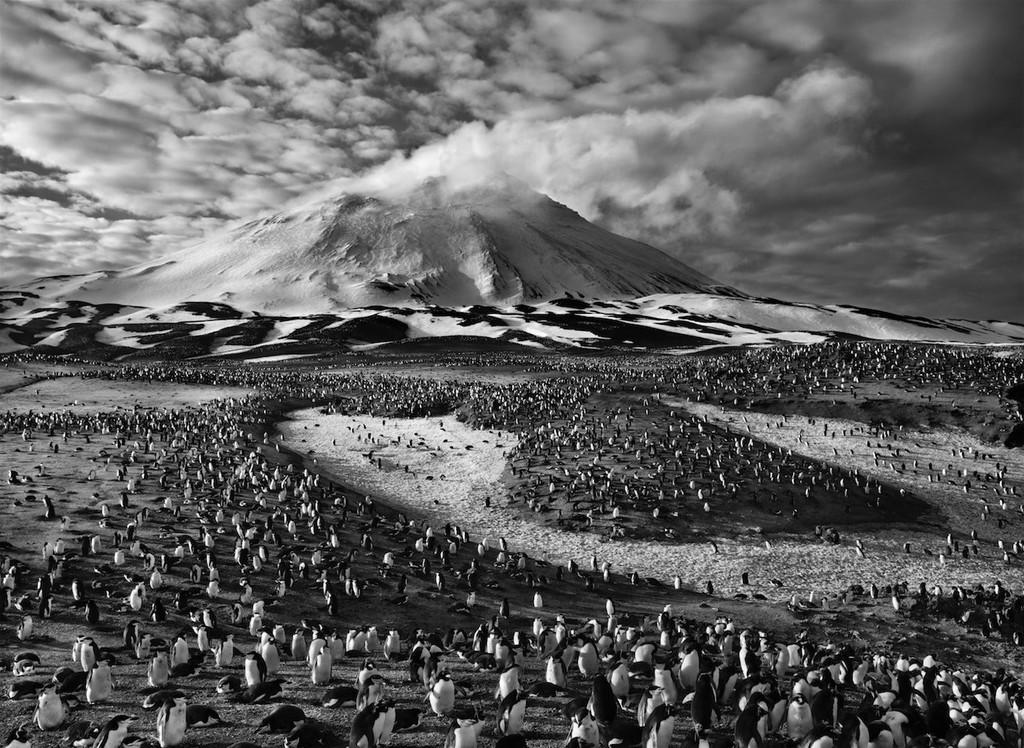 La photographie humaniste de Sebastião Salgado