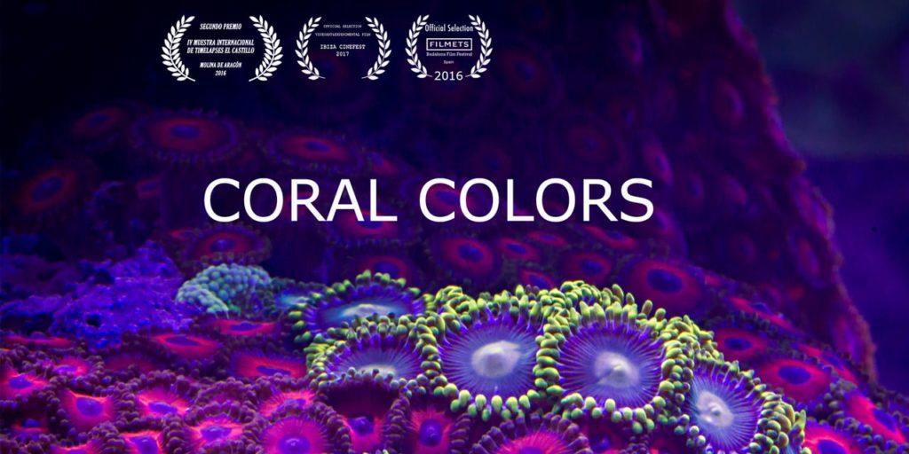 La couleur du corail