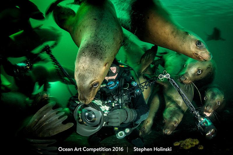 top 15 des plus belles photos sous-marines