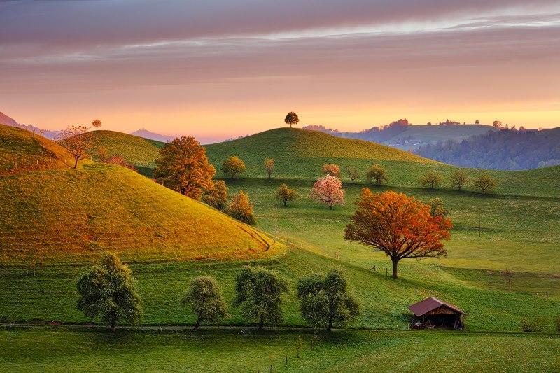suisse saxonne