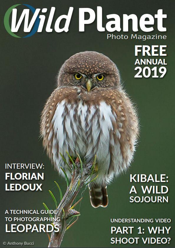 magazines photo gratuits