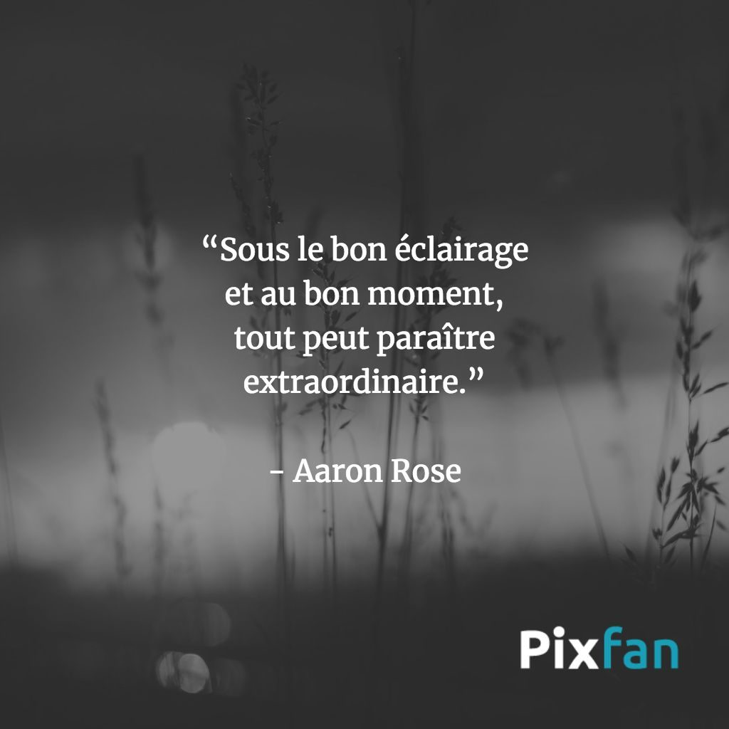 Citations sur le photographie : Aaron Rose