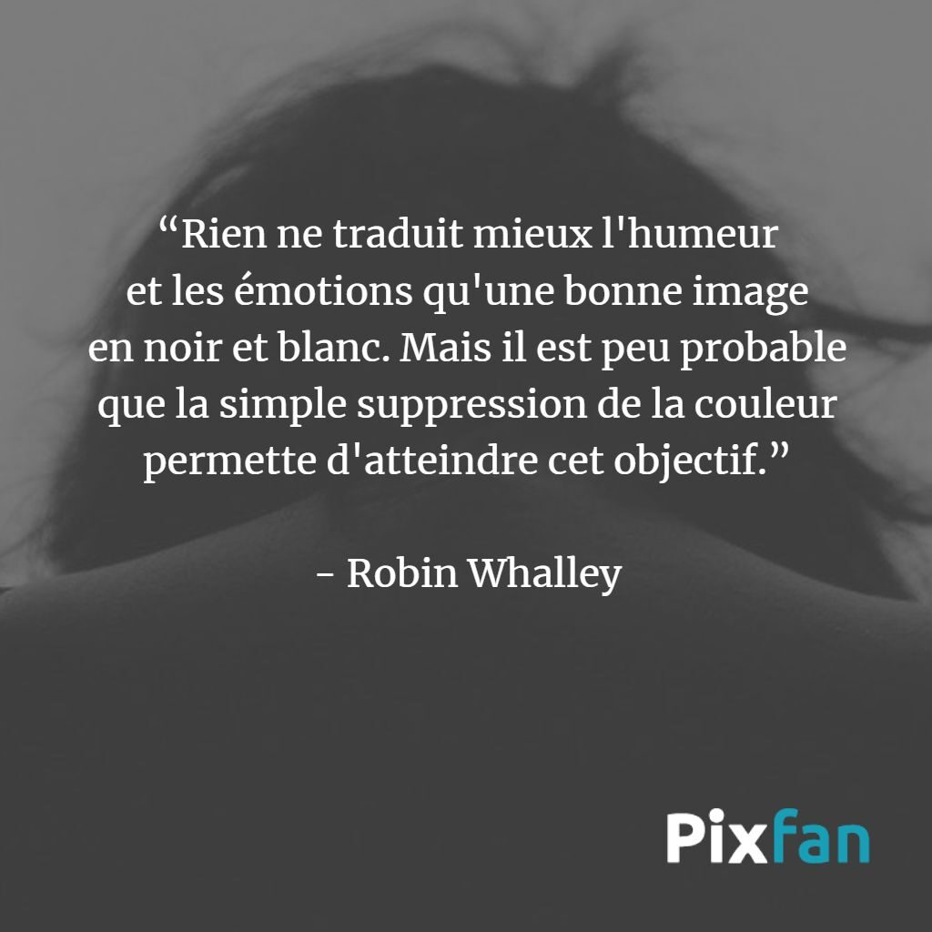 Robin Whalley