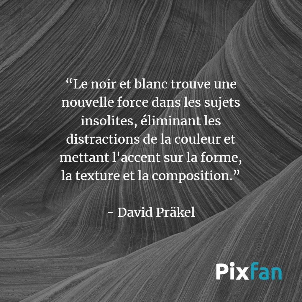 David Präkel